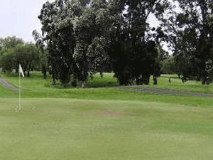 Hilo-Municipal-Golf-Course