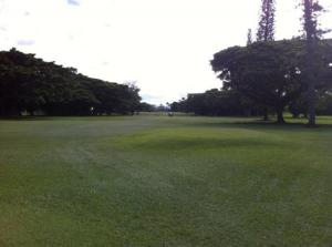 Hilo_Municipal_Golf_Course_-_Hilo_359706